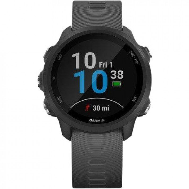 Спортивные часы Garmin Forerunner 245 Slate Gray (010-02120-00)